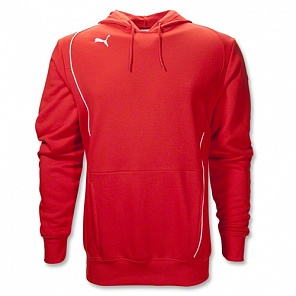 Толстовка Puma Foundation Hooded Sweat  65165201